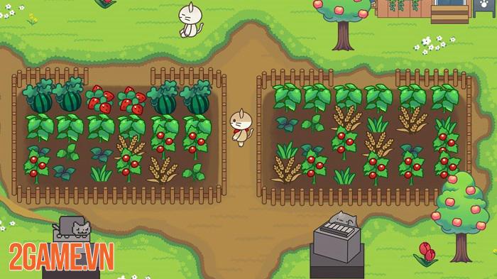 Cat Forest – Healing Camp: Khi loài mèo thống trị thế giới ảo trong game 2