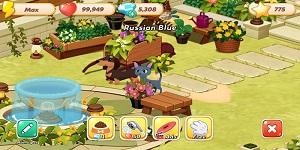 Hellopet House – Game quản lý thú cưng lồng ghép nhiều minigame thú vị