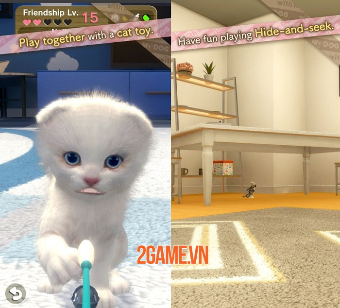 With My CAT - Gặp gỡ và tương tác với những chú mèo con độc đáo 1