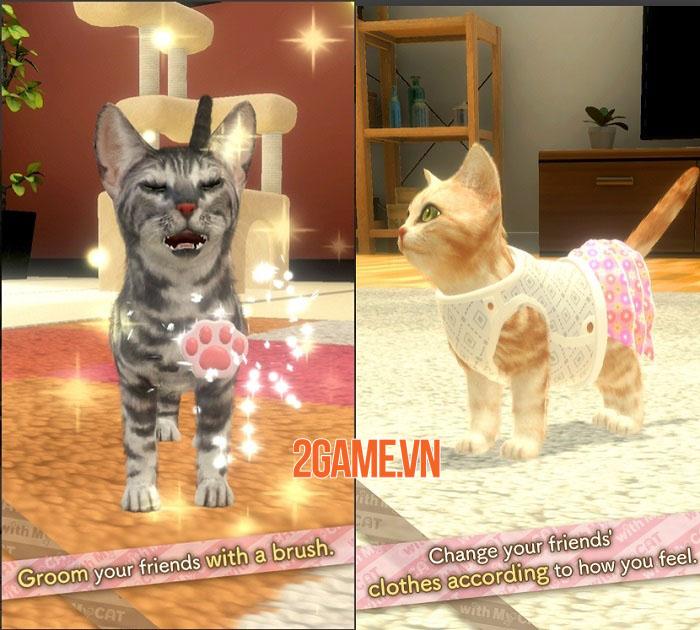 With My CAT - Gặp gỡ và tương tác với những chú mèo con độc đáo 2