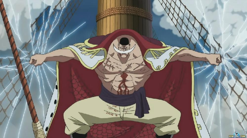 Râu Trắng - Câu chuyện về người đàn ông mạnh nhất One Piece