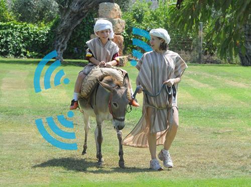 donkey-wifi.