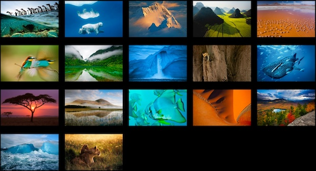 OS-X-Mountain-Lion-Has-an-Extra-43-Stunning-Wallpapers-Secretly-Tucked-Away-2.jpg