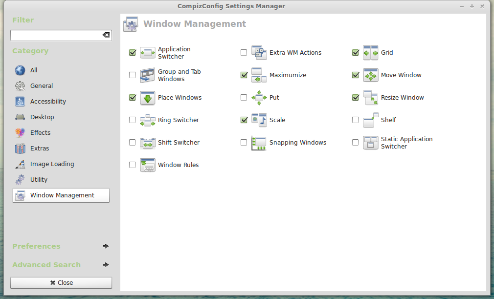 Screenshot-CompizConfig Settings Manager-2.png