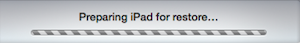 7.2 Preparing for iPad....