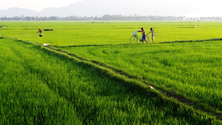 Deutsche Investitions- und Entwicklungsgesellschaft investiert in Kambodscha