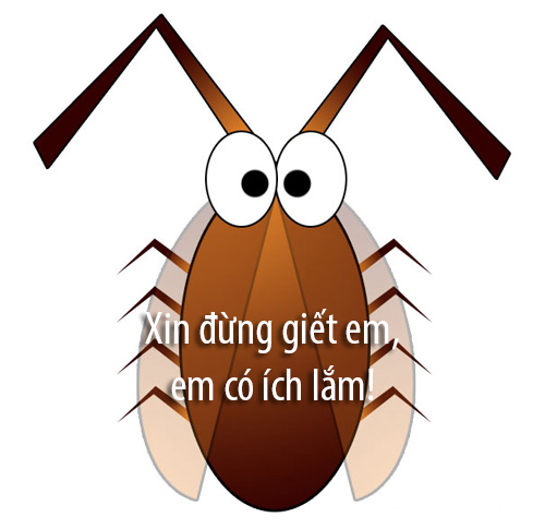cockroach-clip-art-9