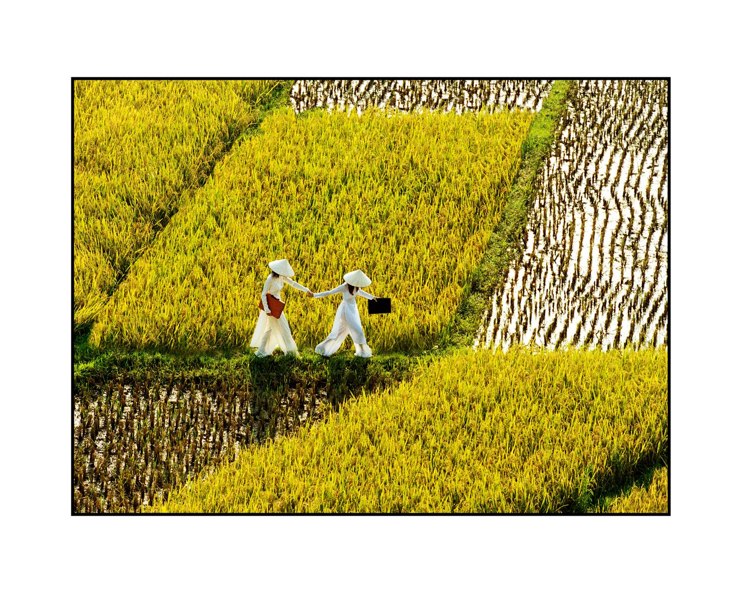 http://cdn.tinhte.vn/attachments/3-thieu-nu-va-canh-dong-mau-20x25-jpg.954592/