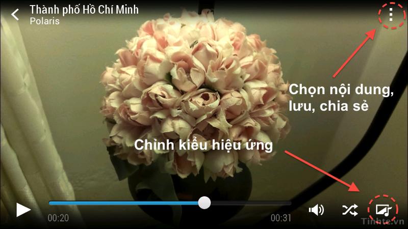 Video_Highlights_that.jpg