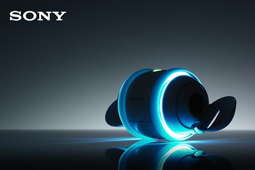 Sony_lap_di_1.jpeg