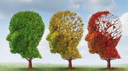 Alzheimer_01.jpg