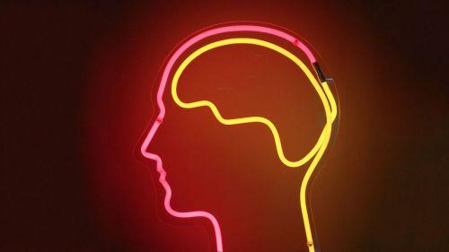 glass-brain.jpg