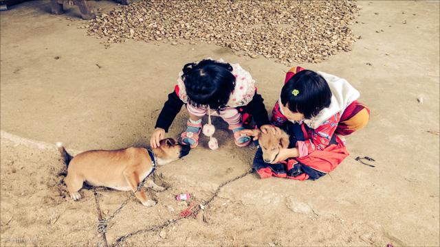 Van Thuong IMG20140121103152(2) copy.tinhte.vn.jpg