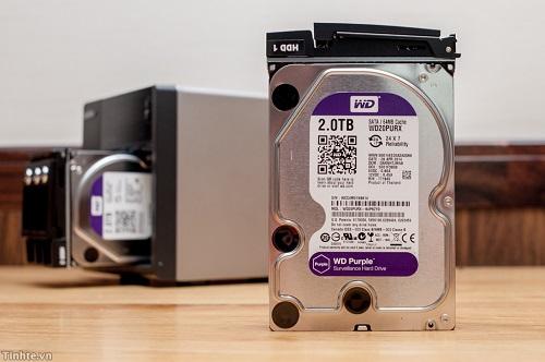 wd-purple.jpg