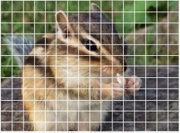 Sony phase AF pixels img02.jpg