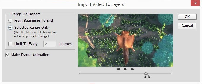 Import Video To Layers.jpg