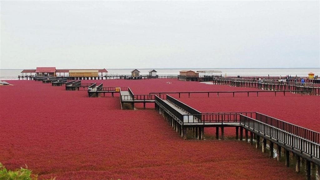 red-beach (1).jpg