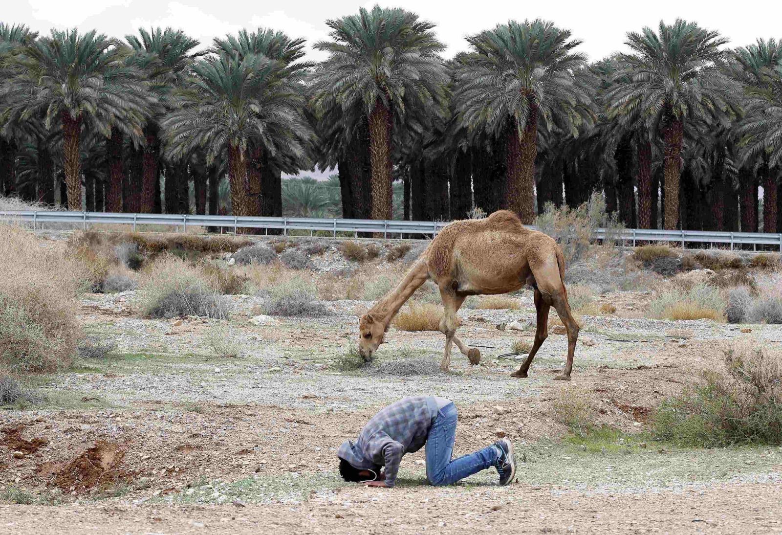 1421339007354-2015-01-11T055655Z_709636451_GM1EB1B00TZ01_RTRMADP_3_ISRAEL-RELIGION.JPG