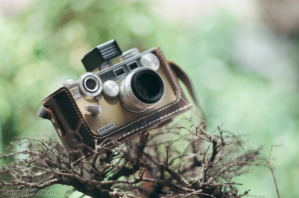 camera.tinhte.vn_film_-5.jpg
