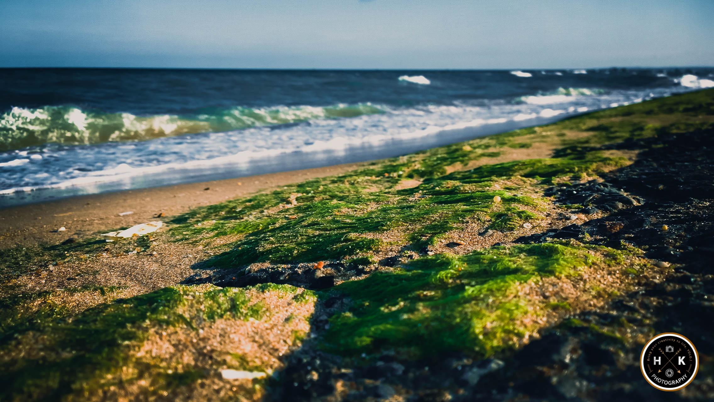 the-beach_17337160786_o.jpg