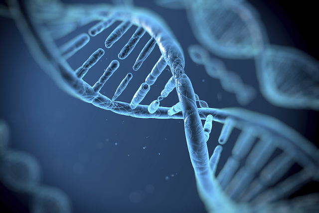 Tinhte-DNA.jpg