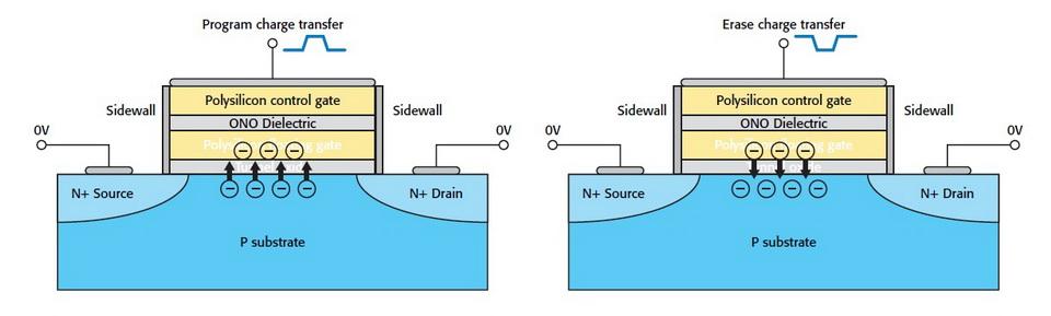 SSD_tinhte 6.jpg