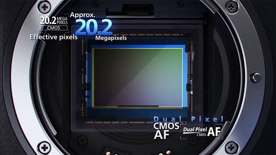 Camera_Tinhte_Canon-1D-X-Mark-II_7.jpg