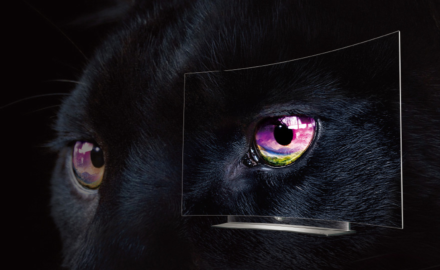 01_PERFECT-black.jpg