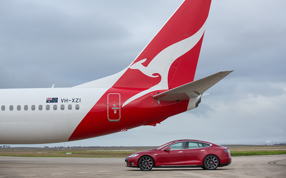 SIDE PROFILE TAIL AND CAR.jpg