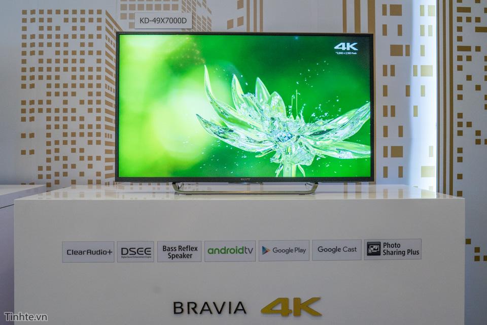 Bravia-4.jpg