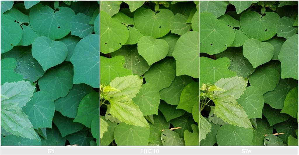 collage-12.jpg