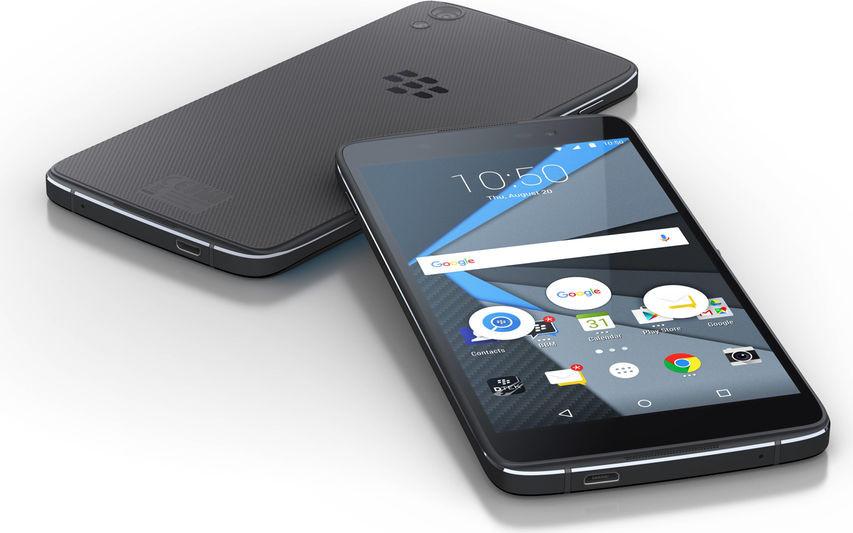 blackberry-neon-1.jpg