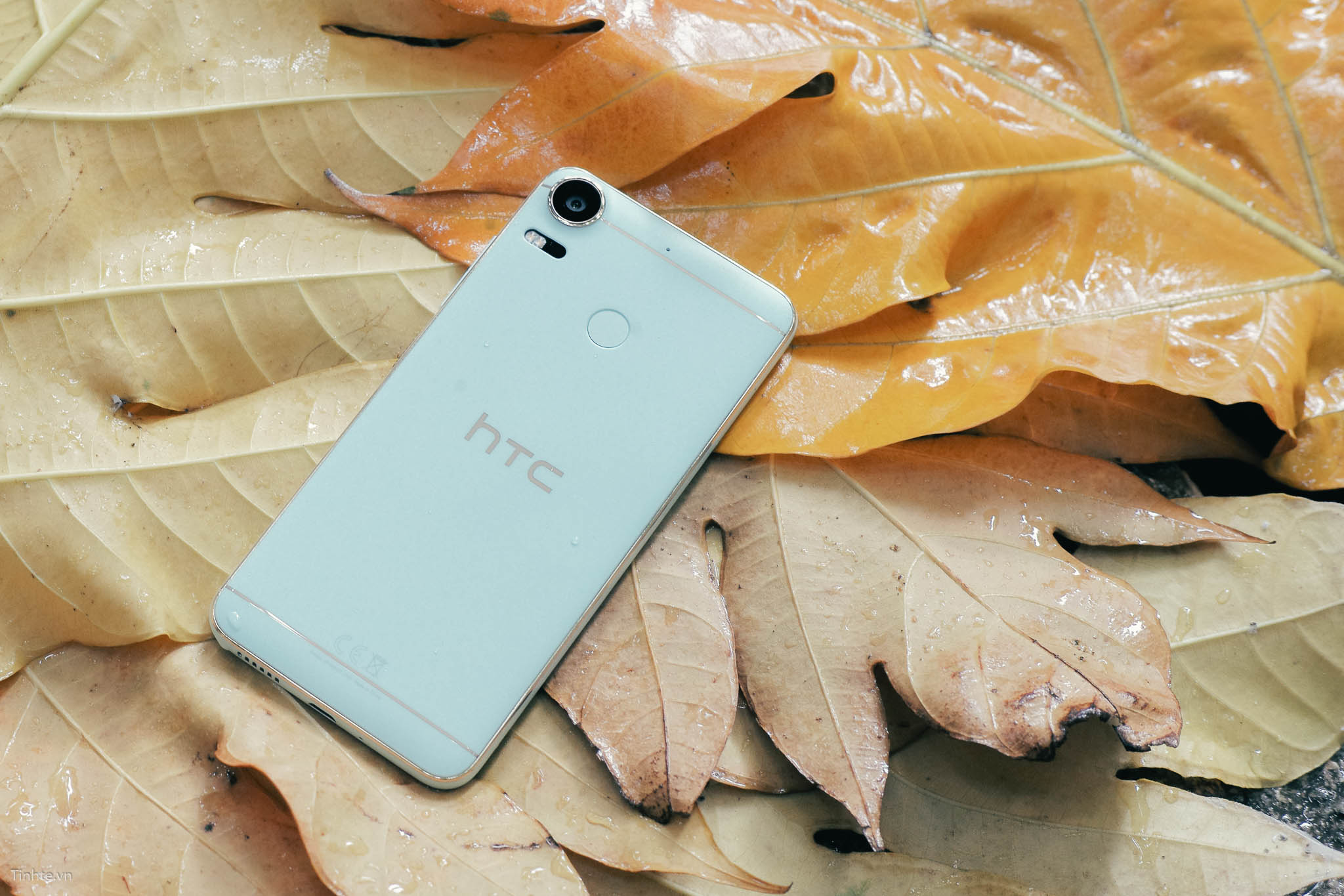 tinhte_HTC_Desire_10_Pro_Blue_Coral_ (5).jpg