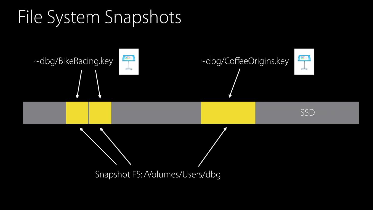 APFS_file_system_snapshot.jpg