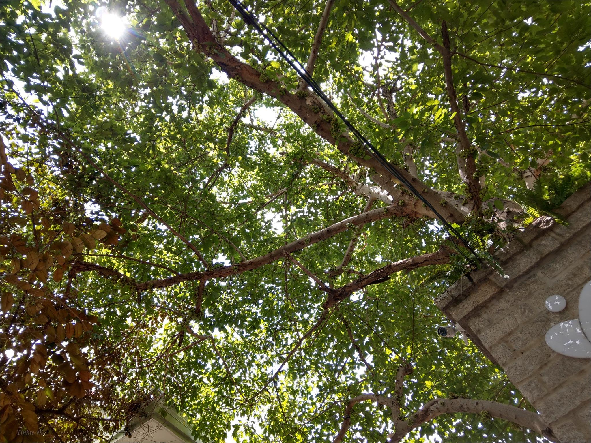 HTC_U11_Camera.tinhte.vn_01.jpg