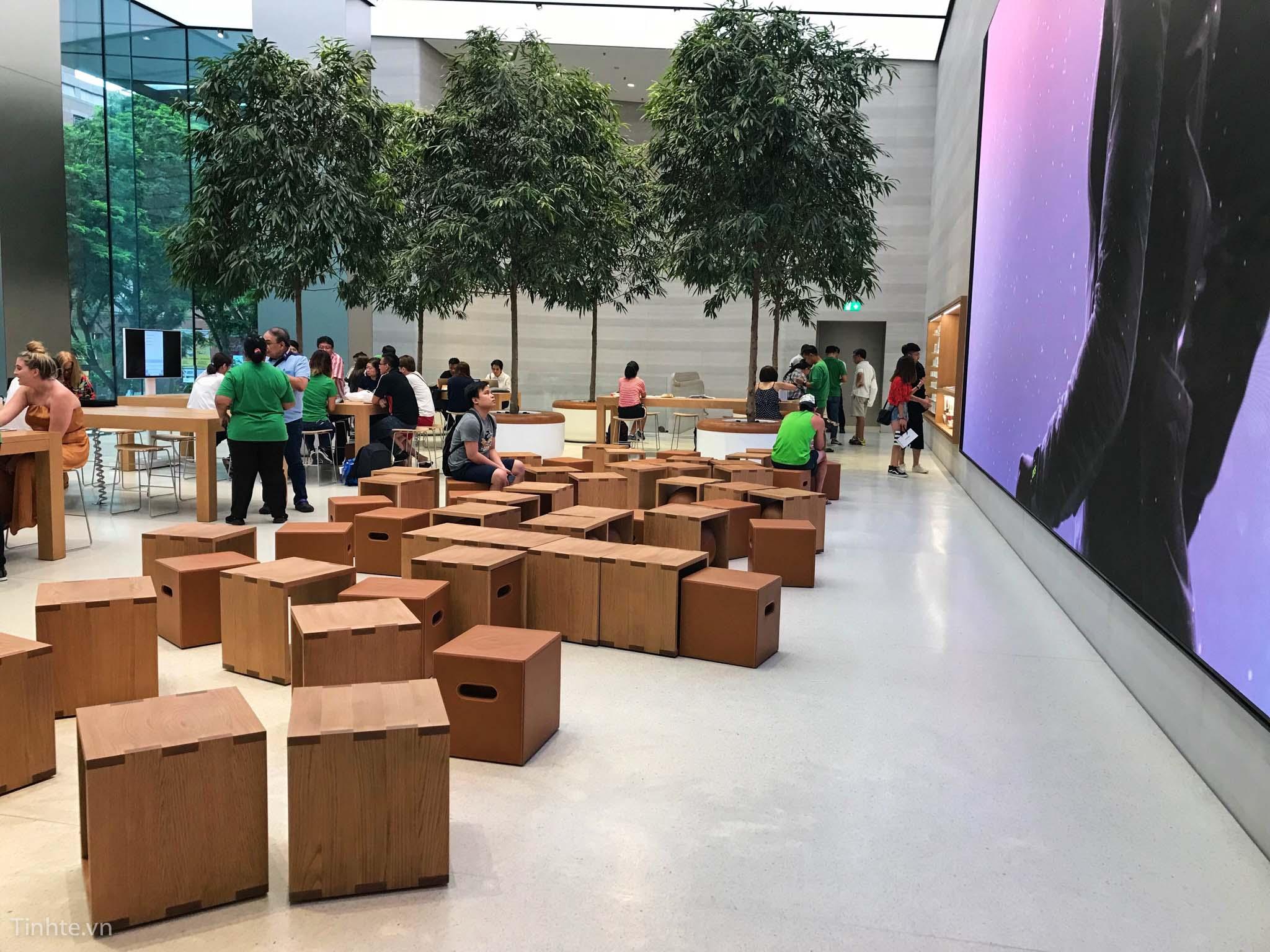 Apple-Store-Orchard-3.jpg
