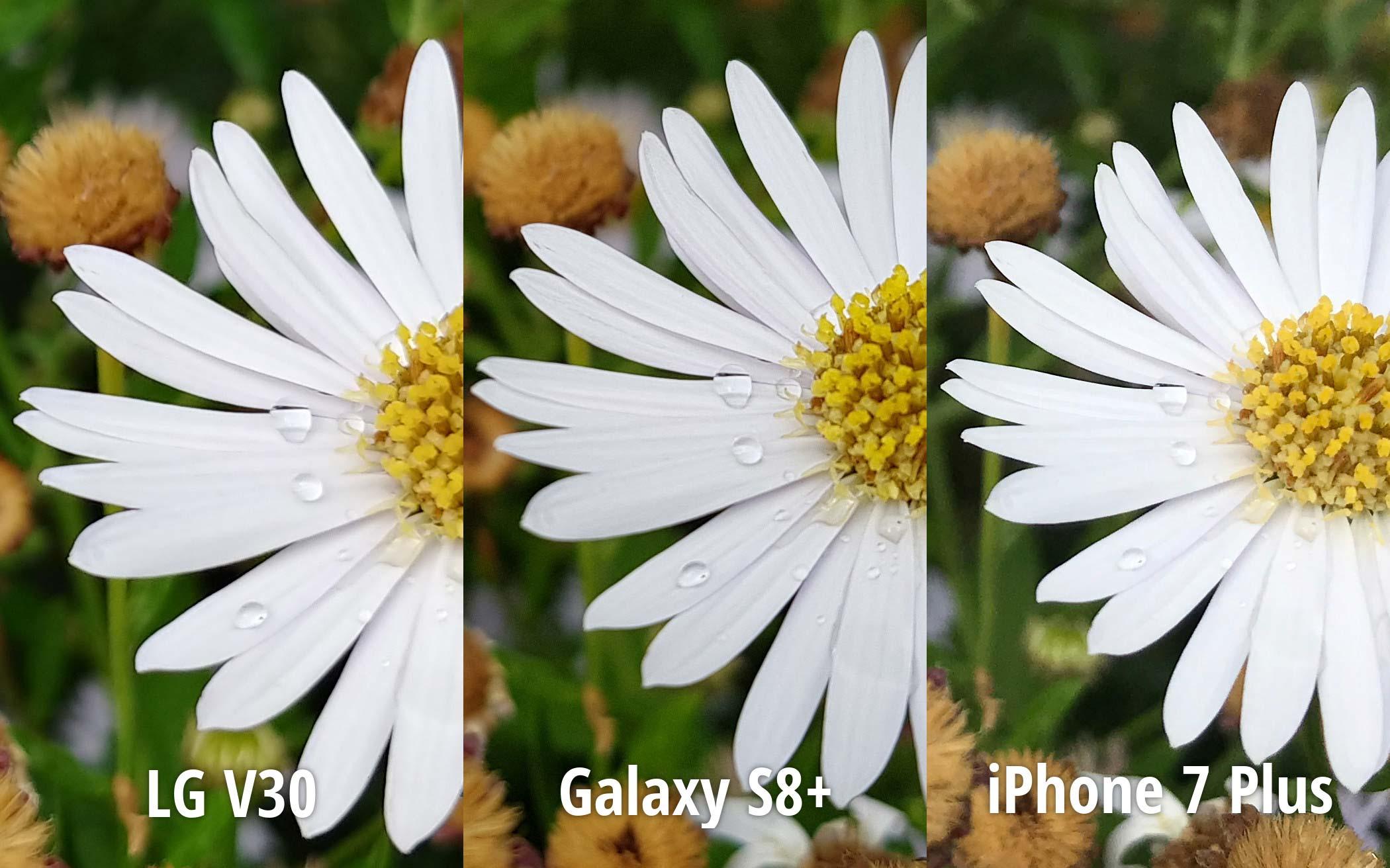 LG-V30-vs-Galaxy-S8-vs-iPhone-7-Plus-camera-photo-samples.jpg