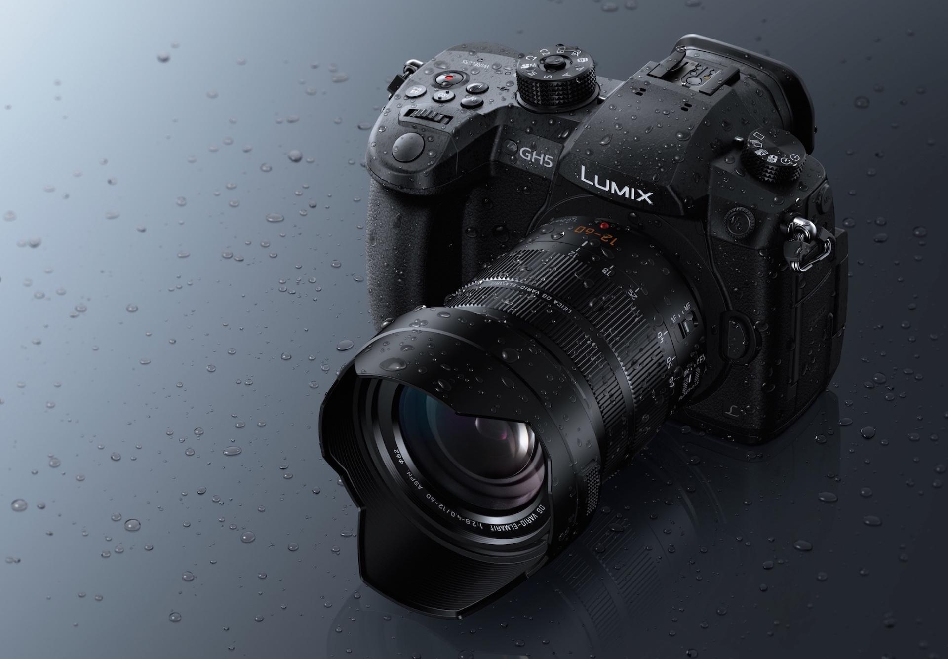 Panasonic Leica DG Vario-Elmarit 12-60mm f2.8-4 Power OIS.jpeg
