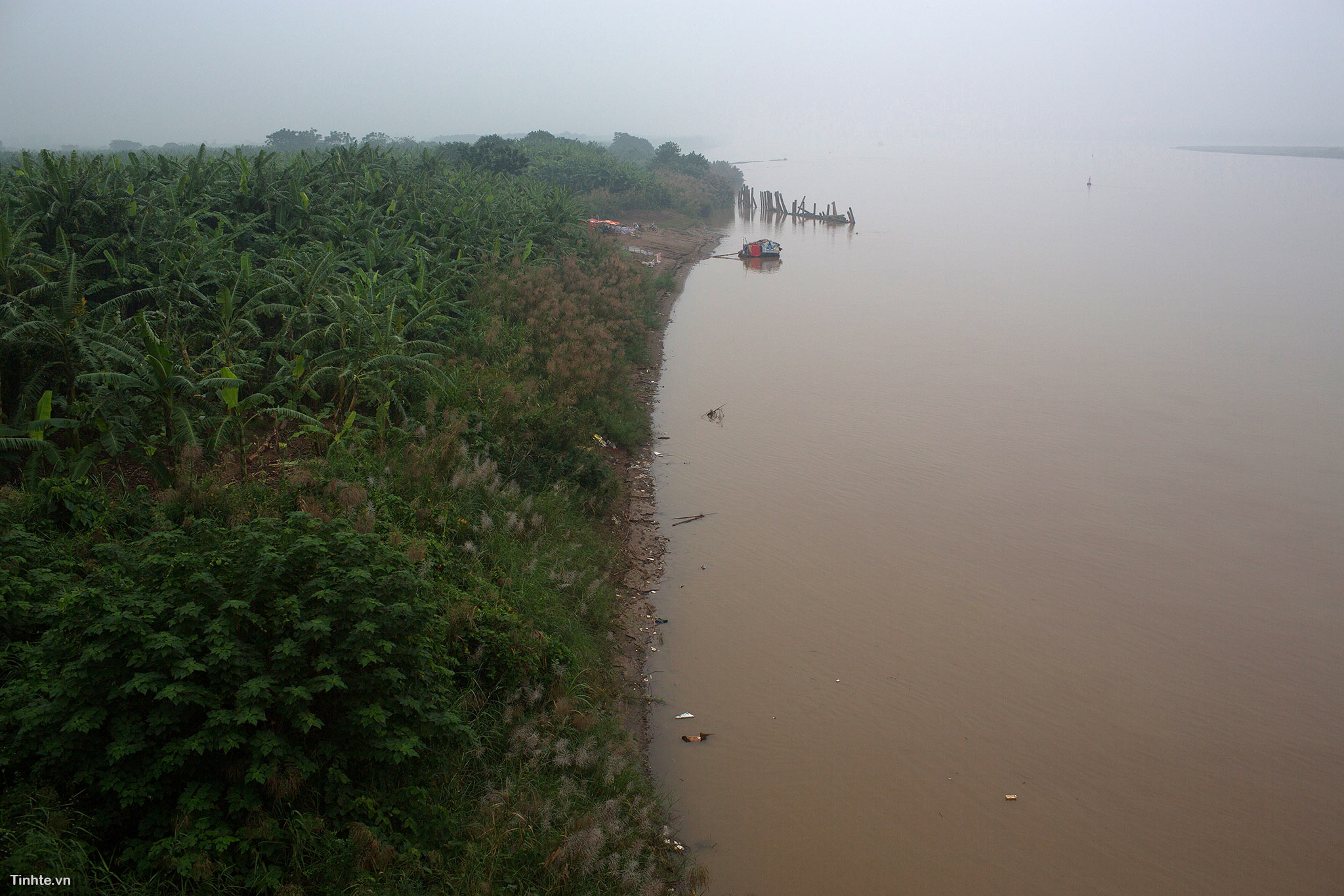 Thanh-Thuy-(1).jpg