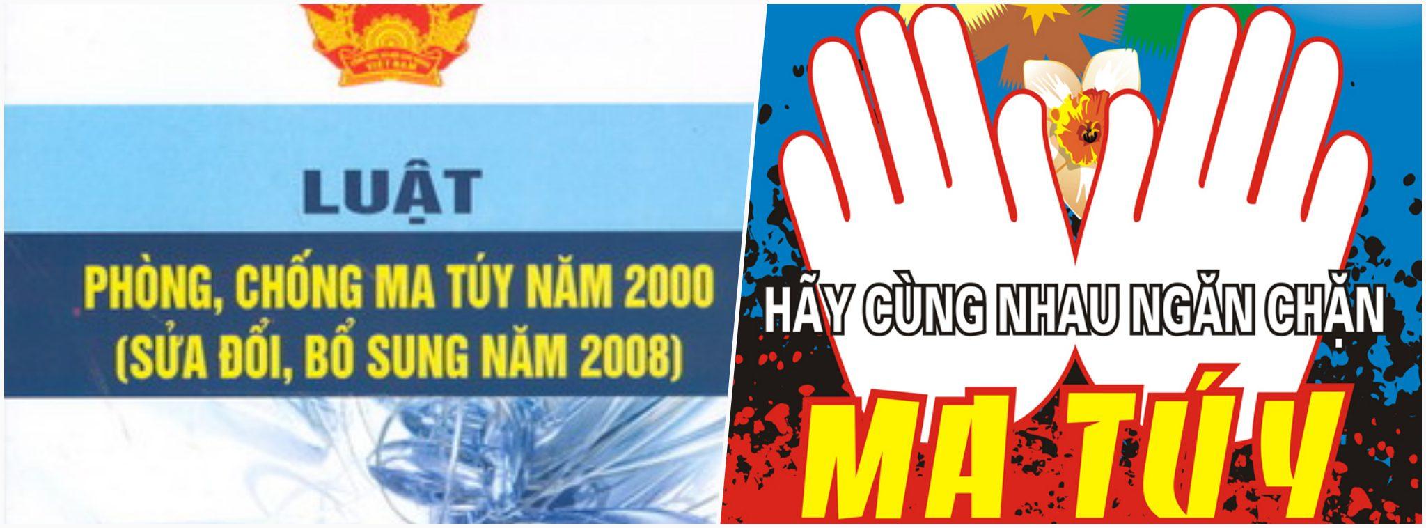 Opioid Vietnam.jpg