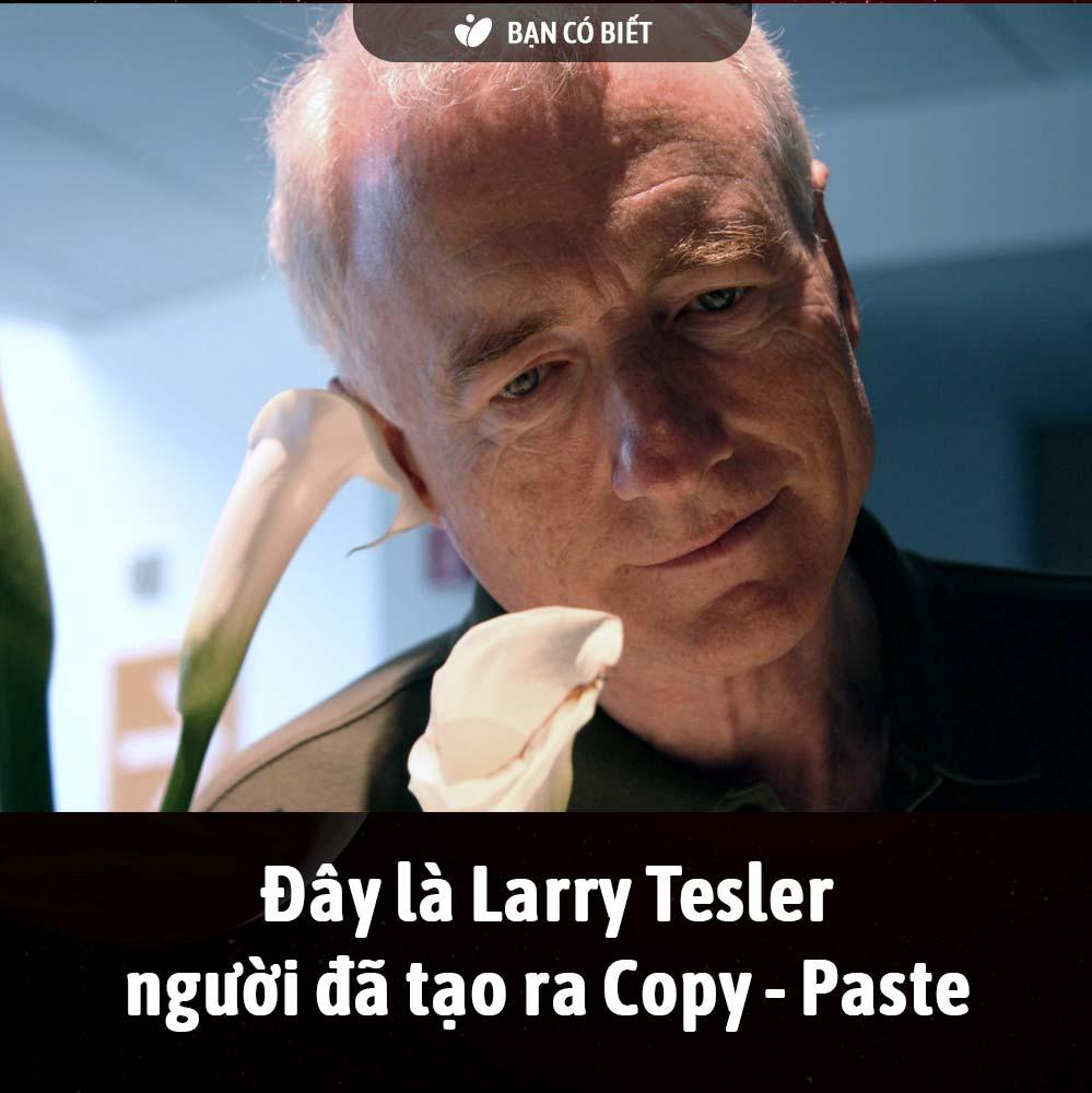 fact2_copypaste.jpg