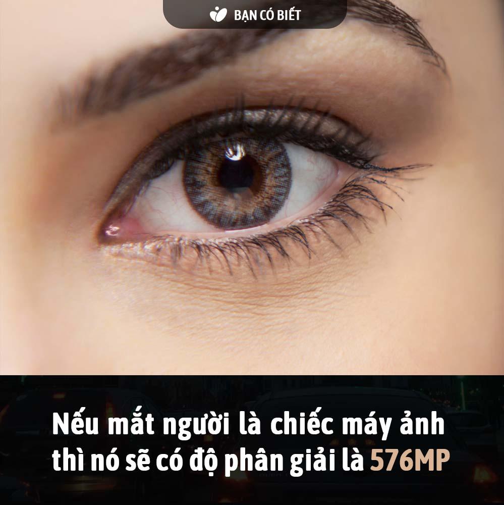 fact2_mat.jpg