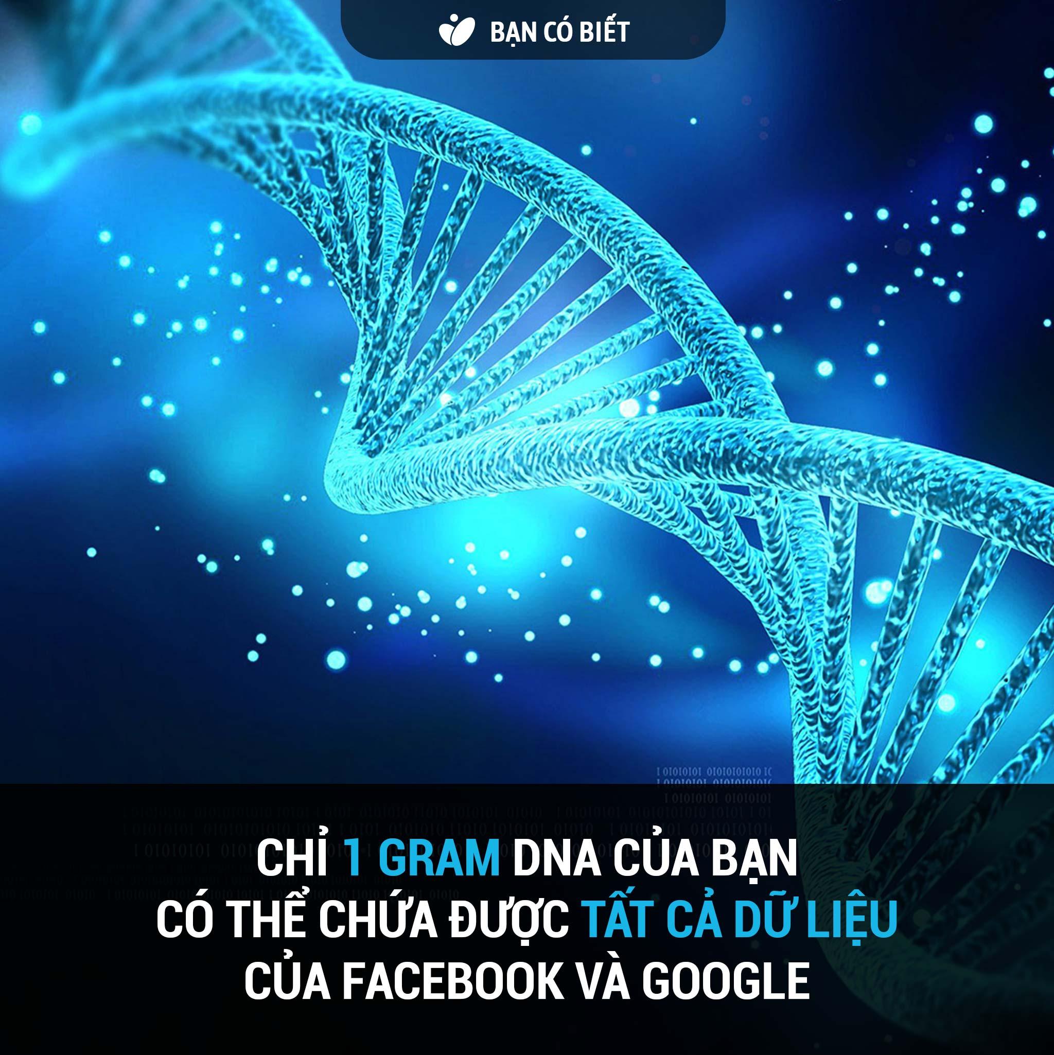 fact2_dna.jpg