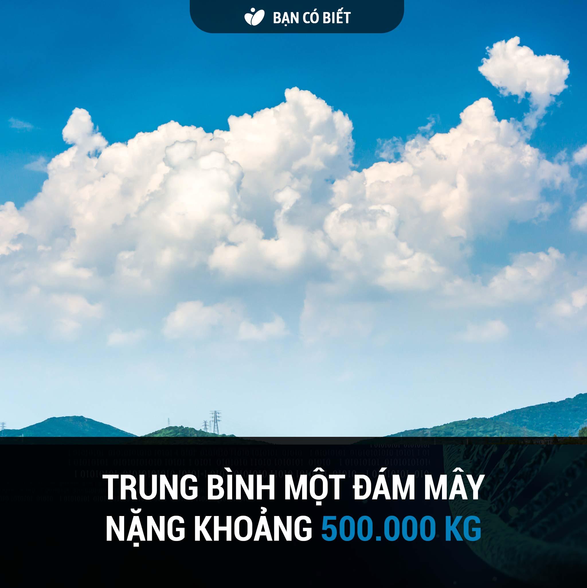 fact2_may.jpg