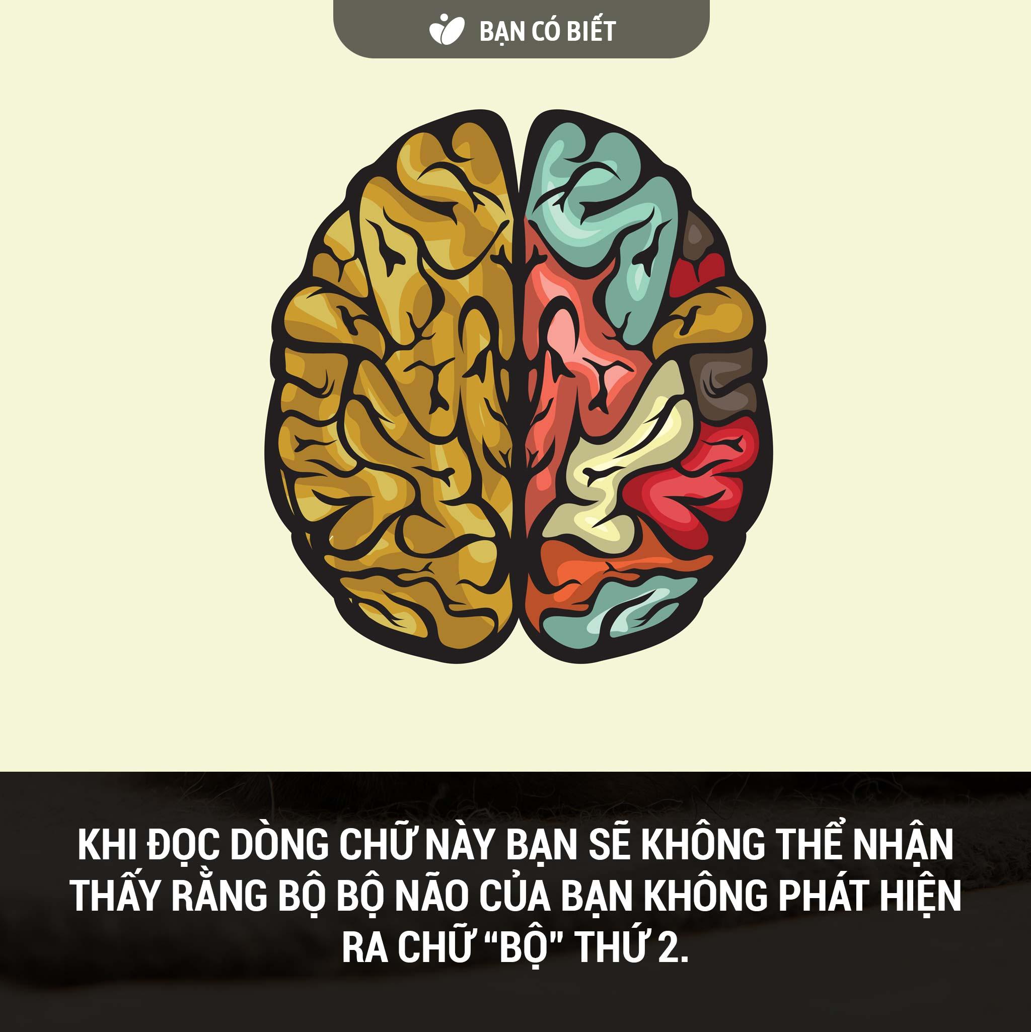 fact2_naodoc.jpg