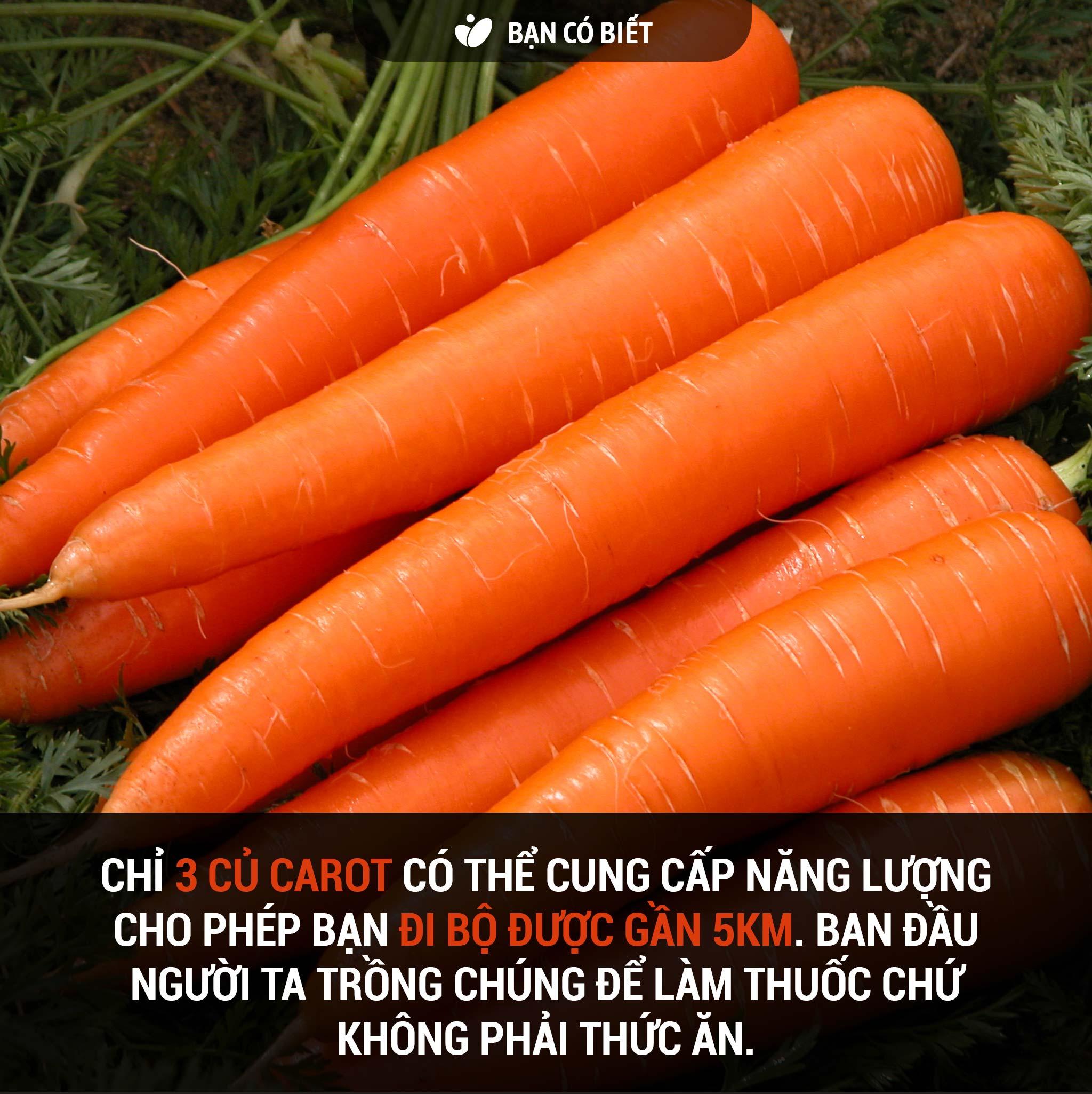 fact2_carrot.jpg
