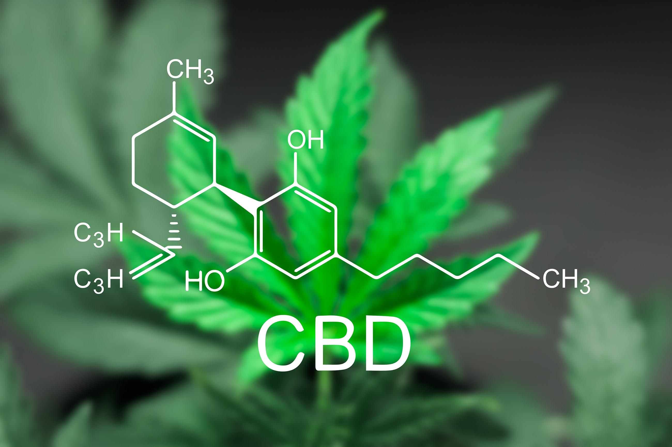 How-to-Choose-a-Medicinal-Cannabis-Strain-CBD.jpg