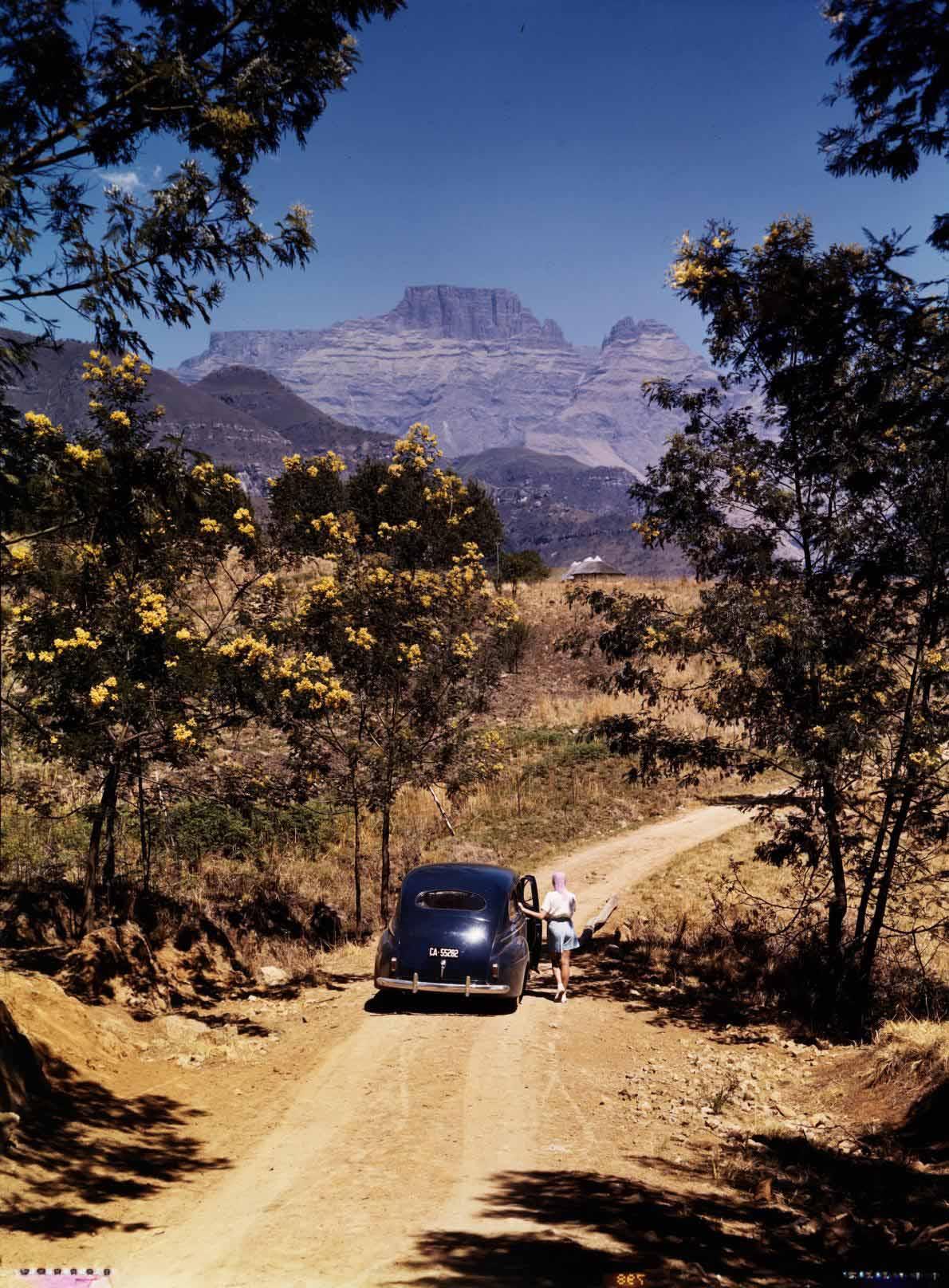 38-africa-road-trip-view.adapt.1190.1.jpg