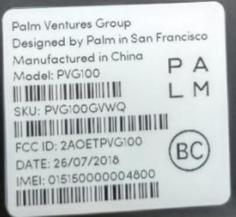 Palm PVG100.jpg