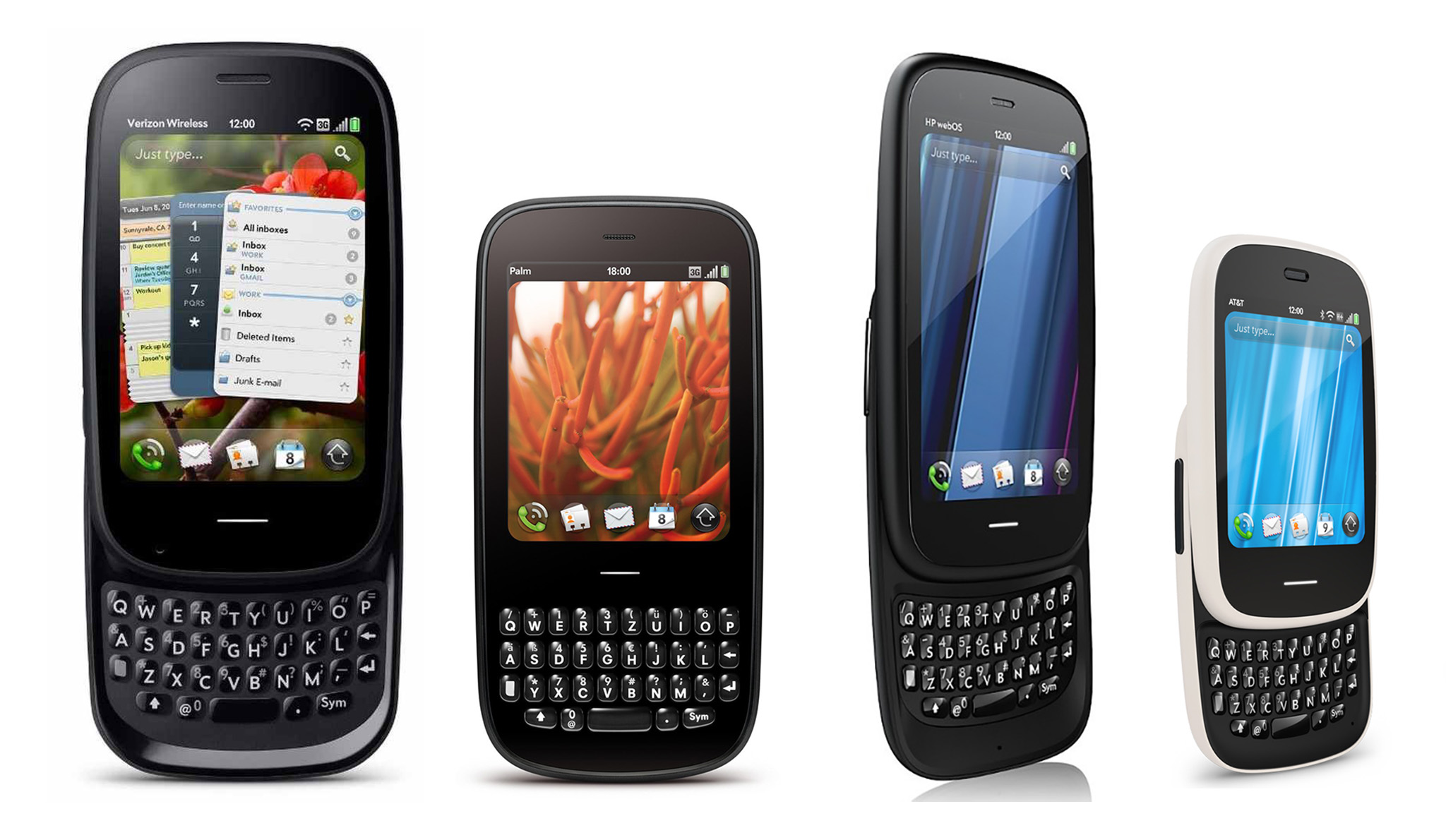 Palm series.jpg